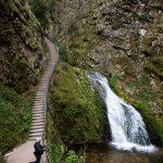 Waterfall: Allerheiligen wasserfälle(Büttensteiner Wasserfälle), Offenberg, Schwarzwald, Germany