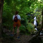 Cascada de Covadonga