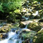 Cascade de la Frasnee