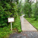 Henfallet-path