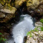 Top of Slap Sum-vintgar-gorge