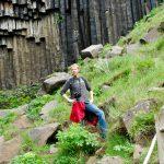 Svartifoss-basalt Skaftafell
