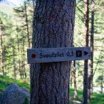 Svoufallet-trail