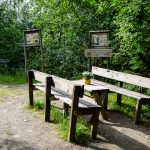 Tvinnefossen-picnic